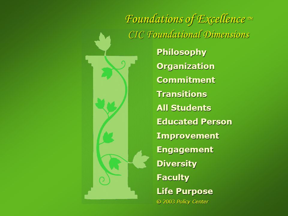 PhilosophyOrganizationCommitmentTransitions All Students Educated Person ImprovementEngagementDiversityFaculty Life Purpose © 2003 Policy Center Foundations of Excellence TM Foundations of Excellence TM CIC Foundational Dimensions