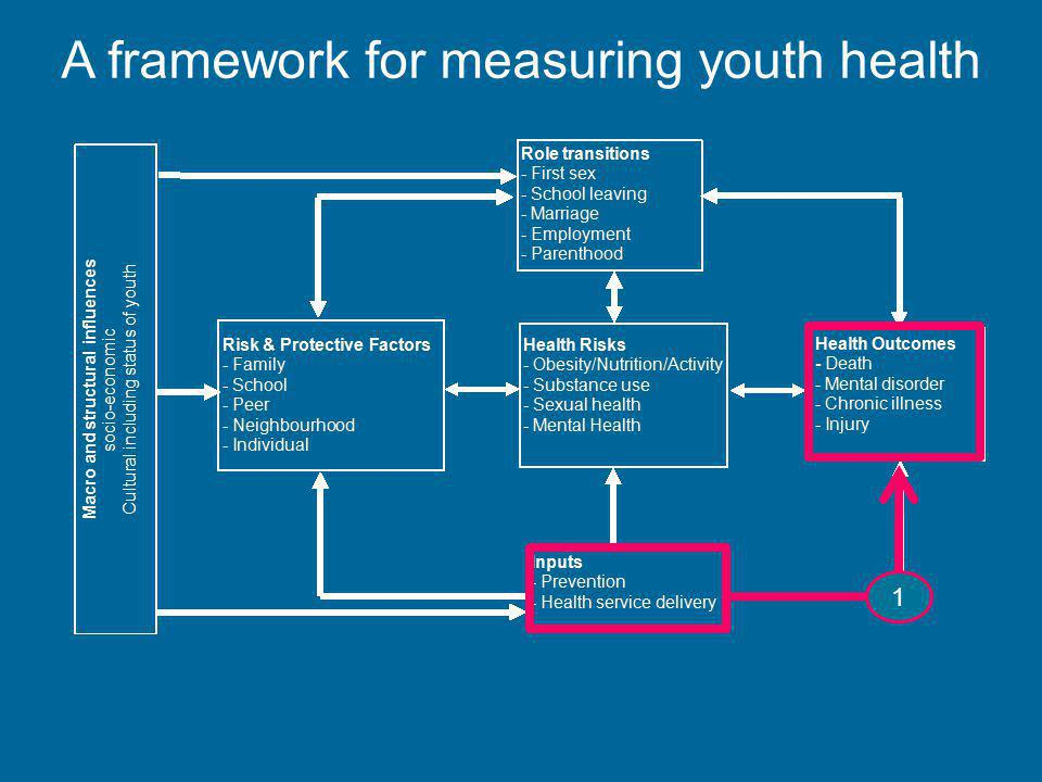 A framework for measuring youth health 1