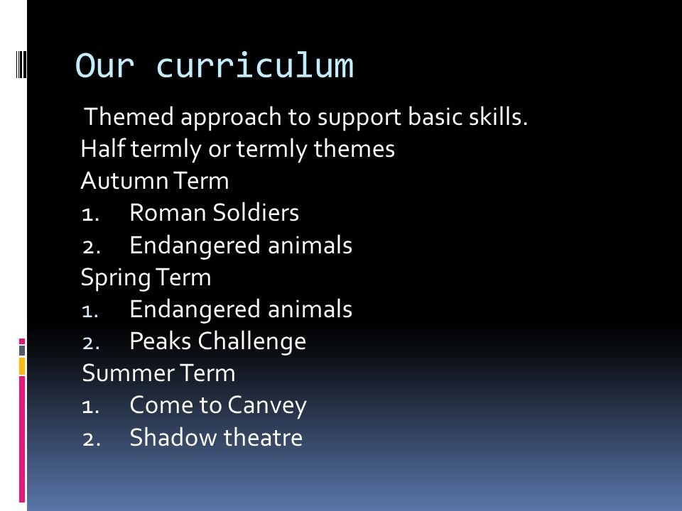 Our curriculum Themed approach to support basic skills. Half termly or termly themes Autumn Term 1.Roman Soldiers 2.Endangered animals Spring Term 1.