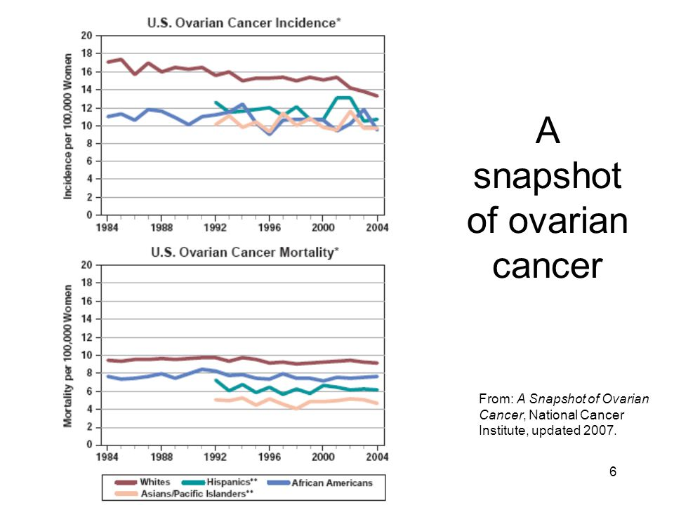 6 A snapshot of ovarian cancer From: A Snapshot of Ovarian Cancer, National Cancer Institute, updated 2007.