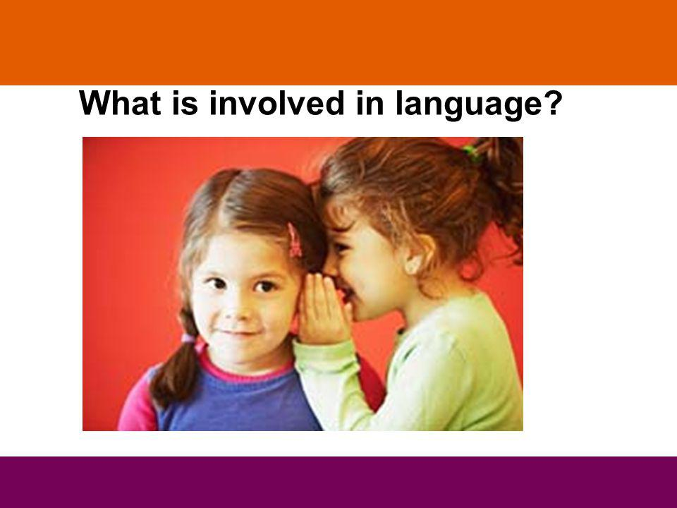 What is involved in language
