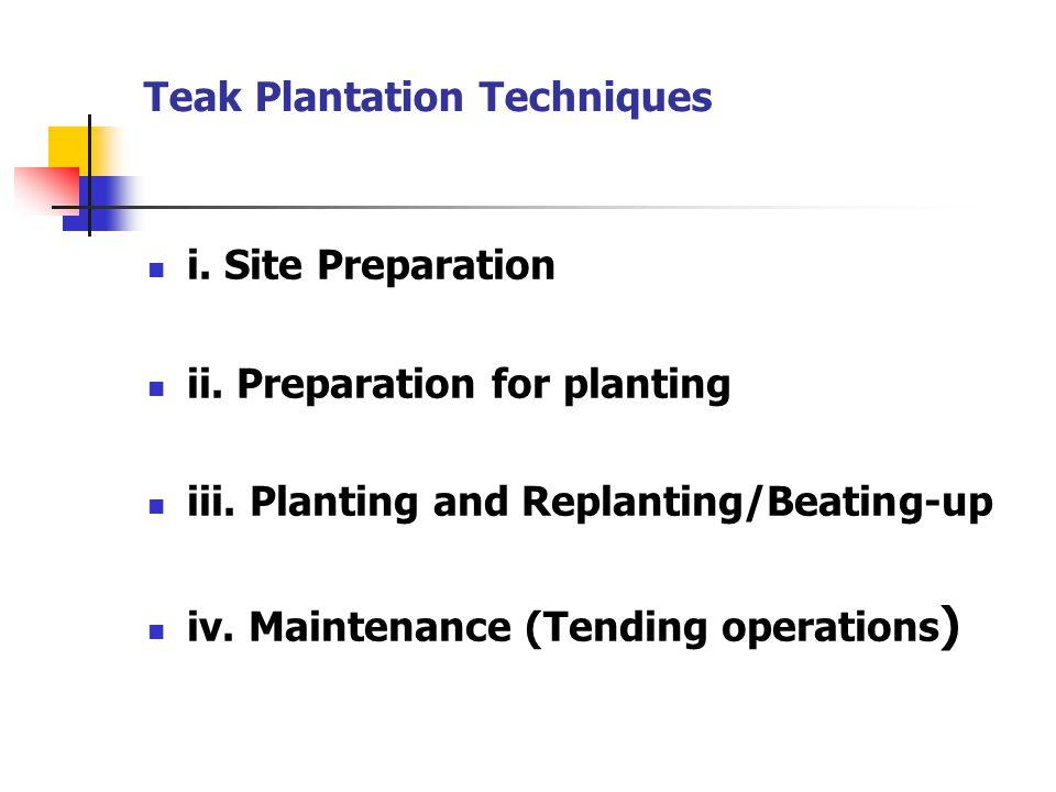 Teak Plantation Techniques i. Site Preparation ii. Preparation for planting iii. Planting and Replanting/Beating-up iv. Maintenance (Tending operation