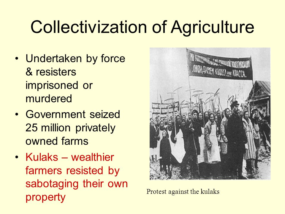 Collective Farm oOwned and operated by members oProducts delivered to the state for fixed prices oFamilies permitted to cultivate their own crops on small plots of land