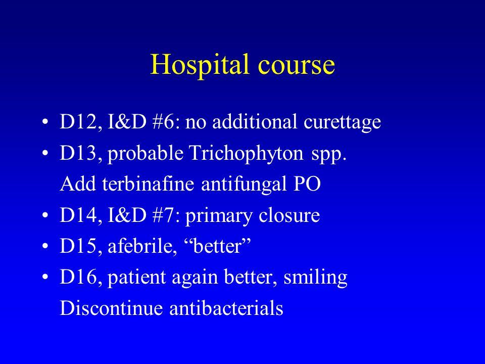 Hospital course D12, I&D #6: no additional curettage D13, probable Trichophyton spp. Add terbinafine antifungal PO D14, I&D #7: primary closure D15, a