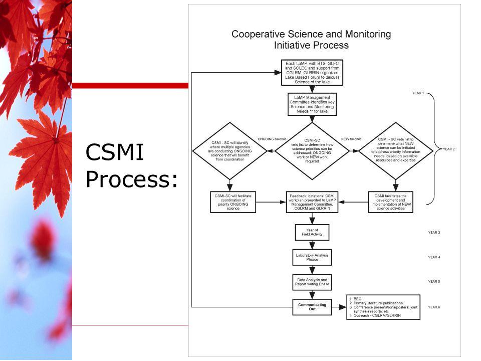 CSMI Process: