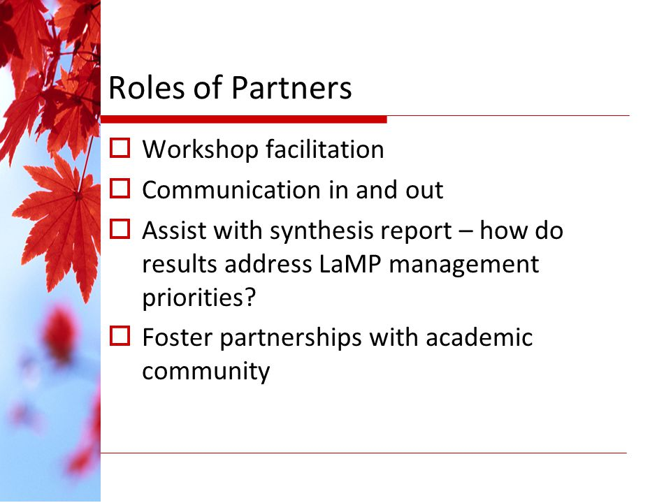 Roles of Partners Workshop facilitation Communication in and out Assist with synthesis report – how do results address LaMP management priorities.