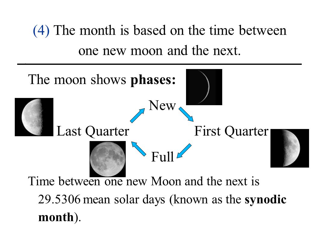 (4) The month is based on the time between one new moon and the next.