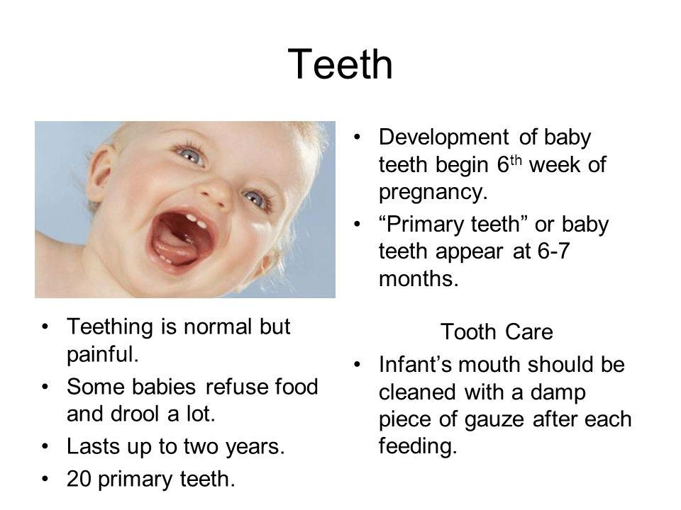 Teeth Development of baby teeth begin 6 th week of pregnancy. Primary teeth or baby teeth appear at 6-7 months. Teething is normal but painful. Some b