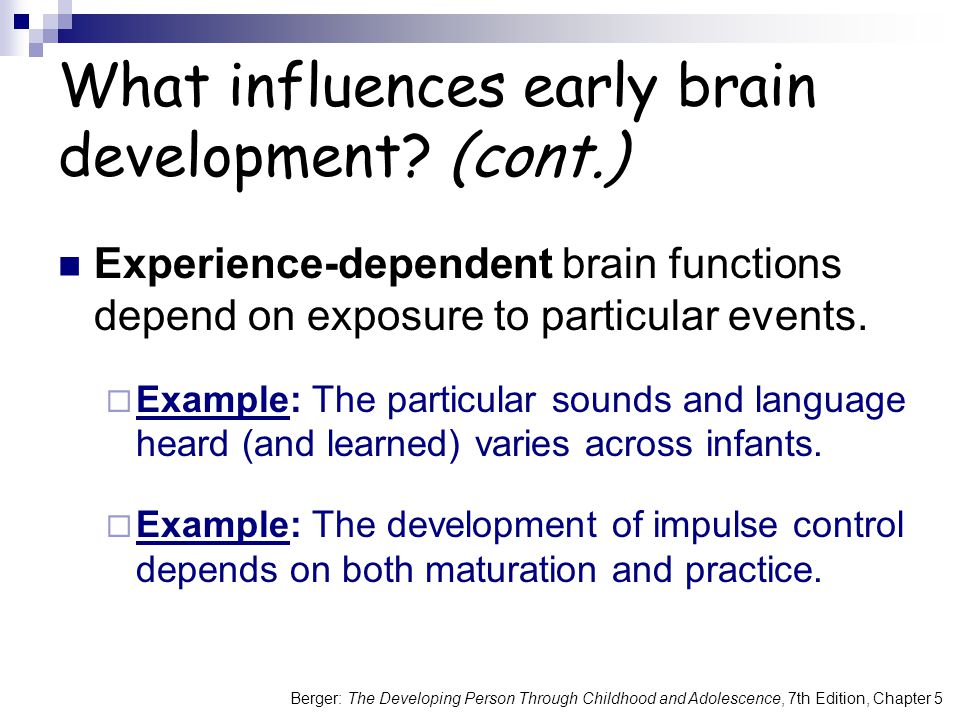 Berger: The Developing Person Through Childhood and Adolescence, 7th Edition, Chapter 5 What influences early brain development? (cont.) Experience-de