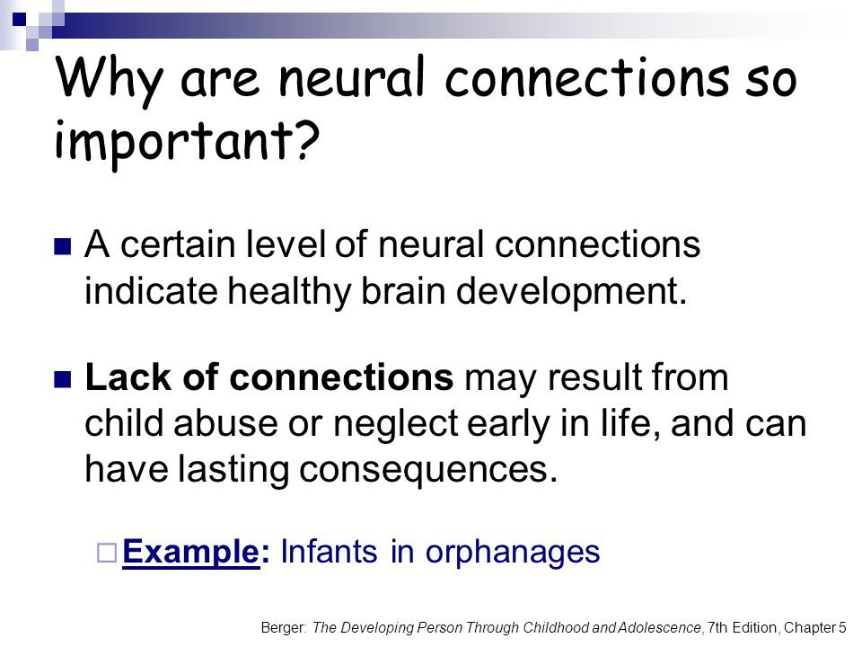 Berger: The Developing Person Through Childhood and Adolescence, 7th Edition, Chapter 5 Why are neural connections so important? A certain level of ne