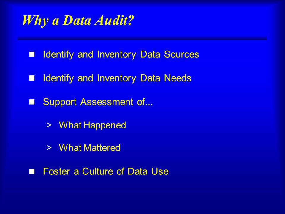 Why a Data Audit.