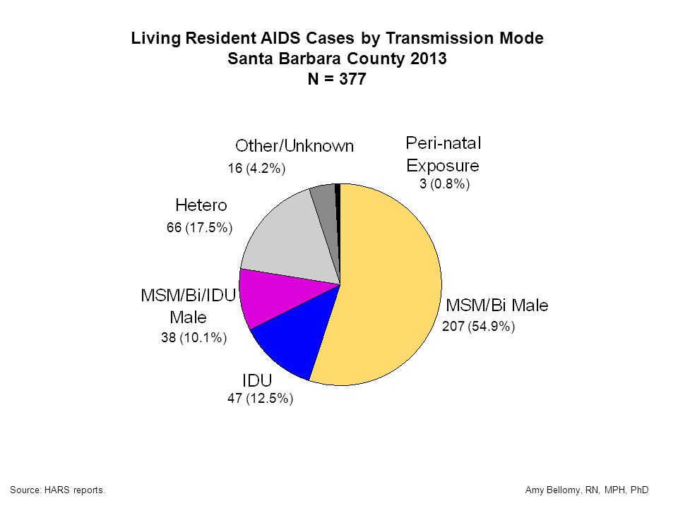Living Resident AIDS Cases by Transmission Mode Santa Barbara County 2013 N = 377 207 (54.9%) 16 (4.2%) 66 (17.5%) 47 (12.5%) 38 (10.1%) Source: HARS reports.