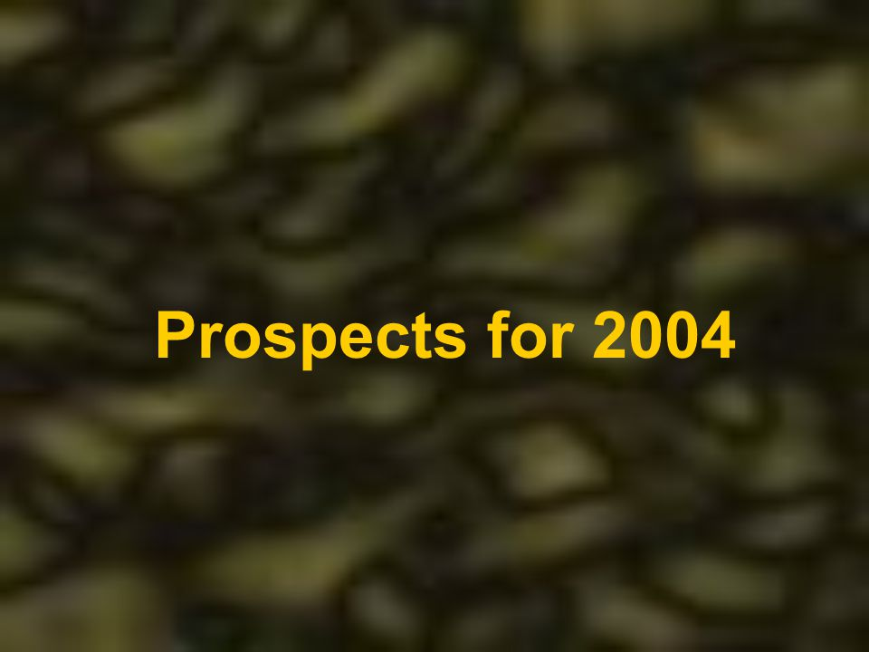 Prospects for 2004
