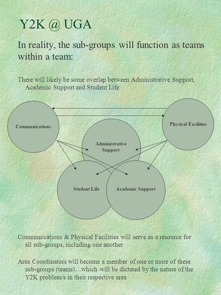 Y2K @ UGA In reality, the sub-groups will function as teams within a team: Administrative Support Student Life Academic Support There will likely be s