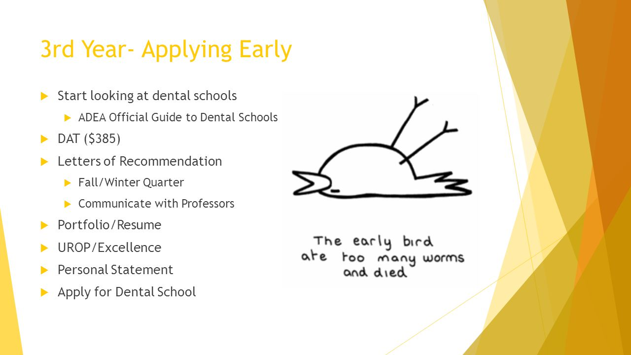 3rd Year- Applying Early Start looking at dental schools ADEA Official Guide to Dental Schools DAT ($385) Letters of Recommendation Fall/Winter Quarte
