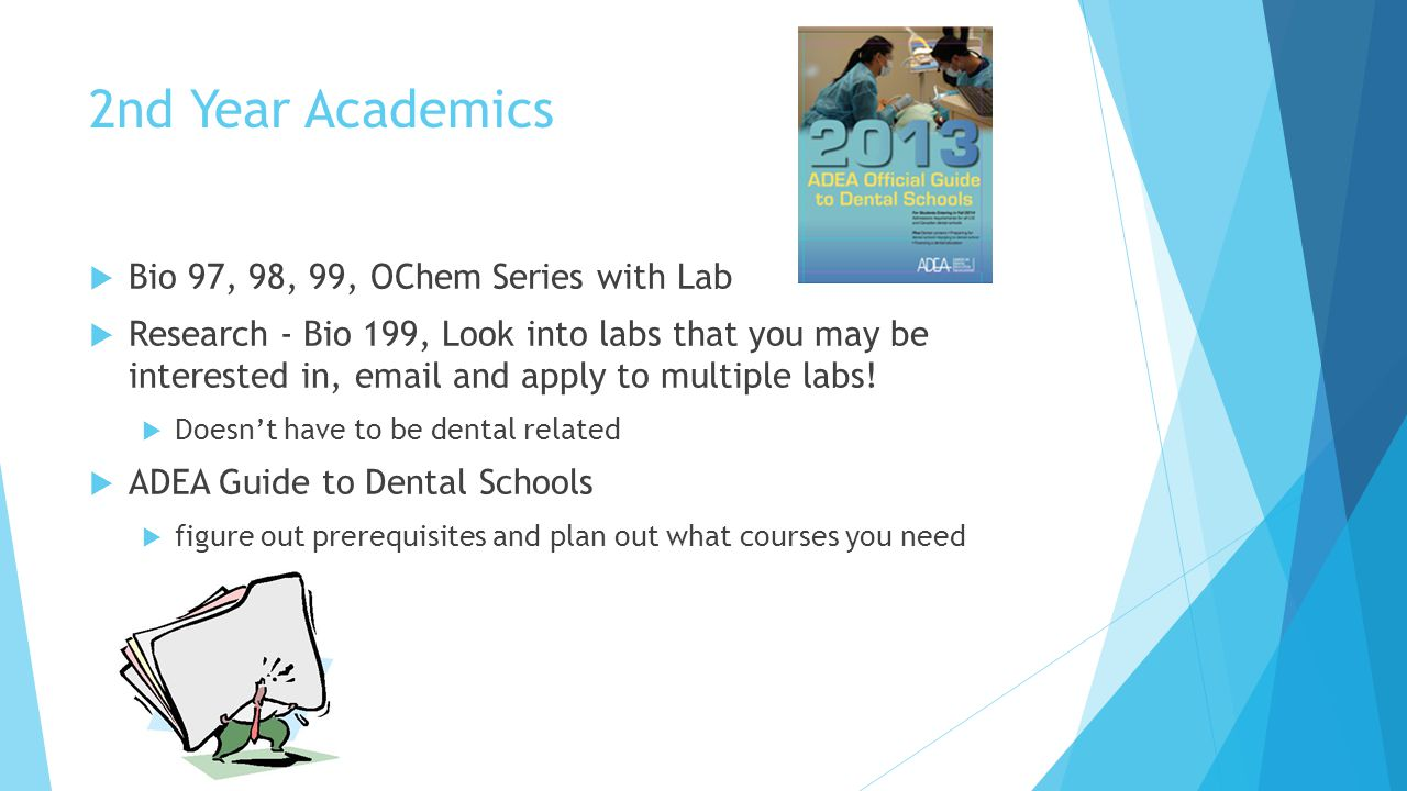 2nd Year Academics Bio 97, 98, 99, OChem Series with Lab Research - Bio 199, Look into labs that you may be interested in, email and apply to multiple