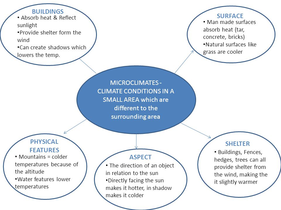 MICROCLIMATES - CLIMATE CONDITIONS IN A SMALL AREA which are different to the surrounding area BUILDINGS SURFACE SHELTER ASPECT PHYSICAL FEATURES BUIL