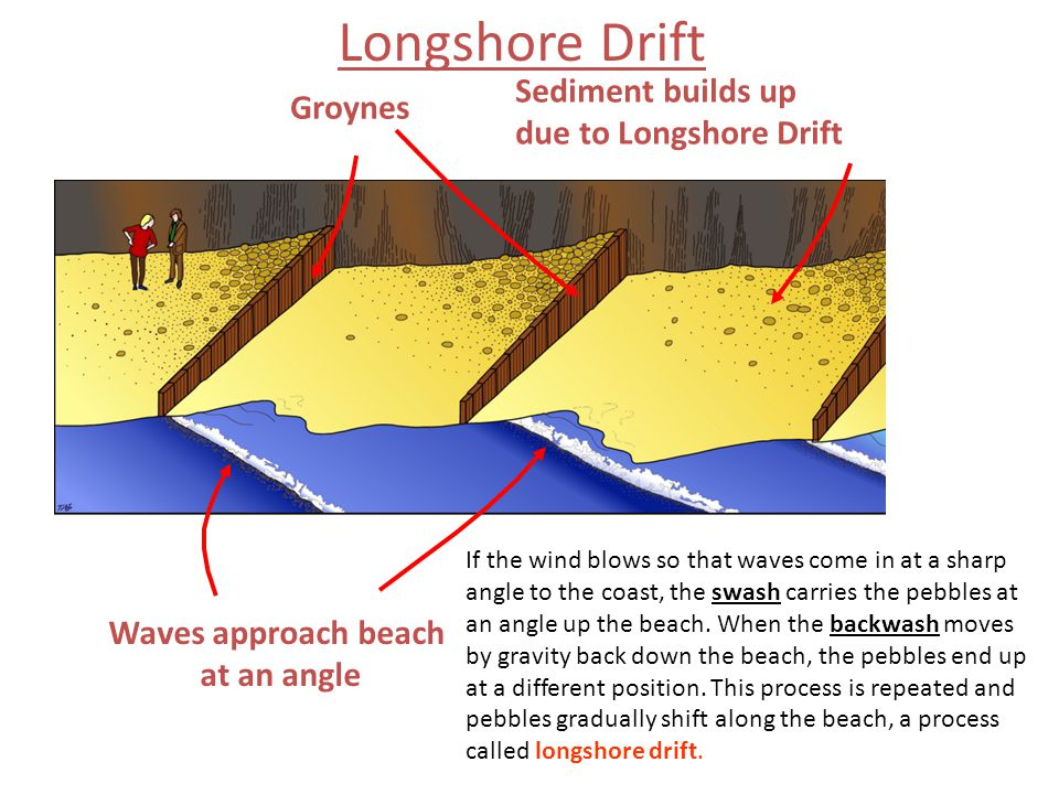 Groynes Sediment builds up due to Longshore Drift Waves approach beach at an angle Longshore Drift If the wind blows so that waves come in at a sharp