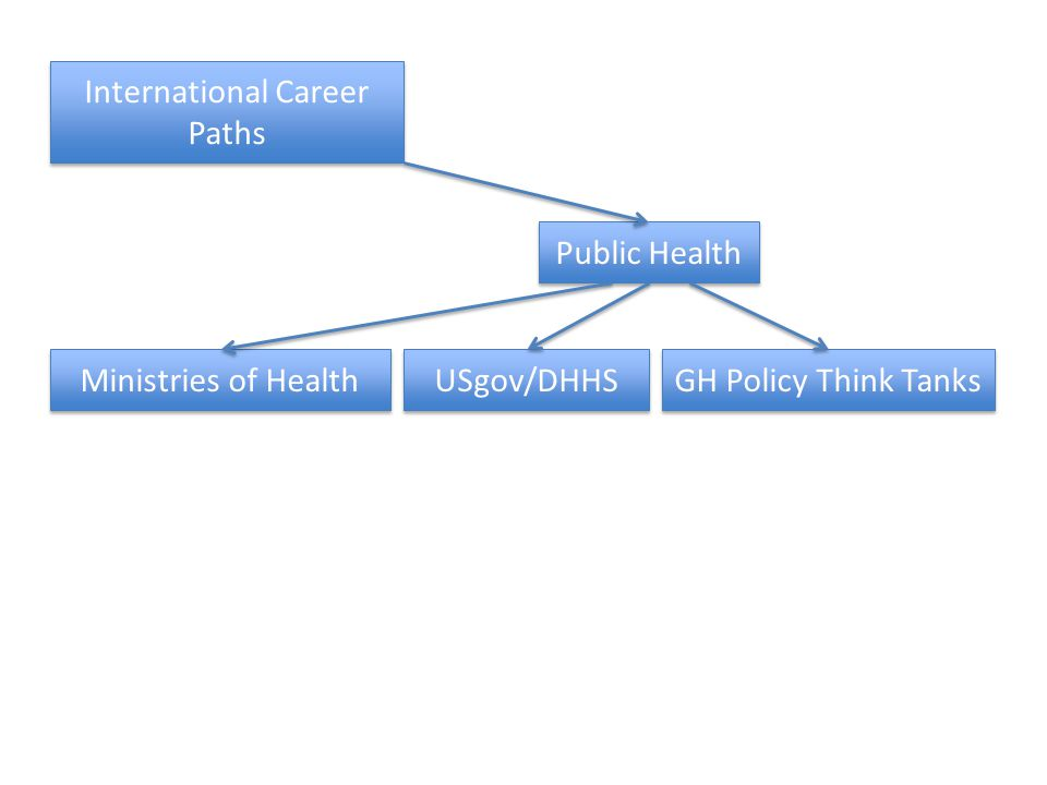 International Career Paths Public Health Ministries of Health USgov/DHHS GH Policy Think Tanks