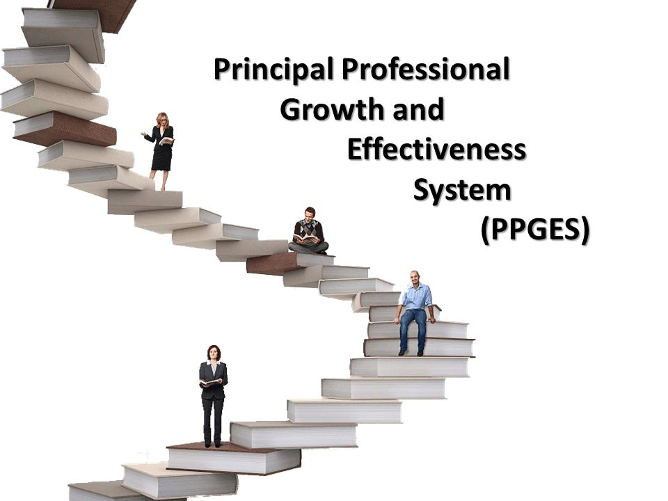 Principal Professional Growth and Effectiveness System(PPGES)