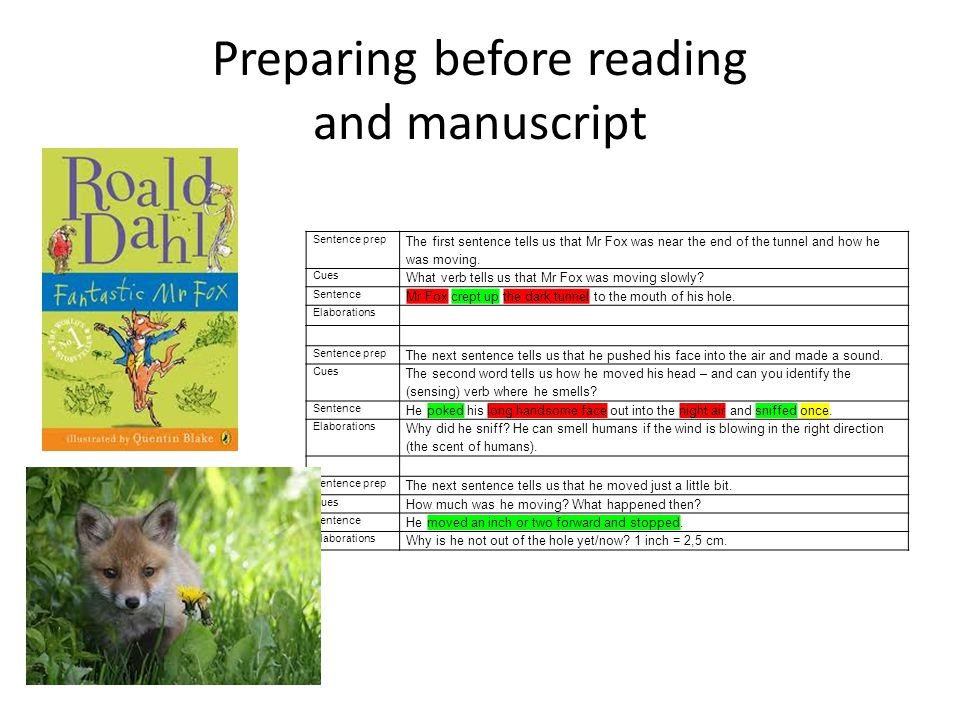 Preparing before reading and manuscript Sentence prep The first sentence tells us that Mr Fox was near the end of the tunnel and how he was moving.