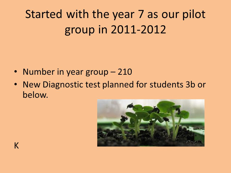 Started with the year 7 as our pilot group in 2011-2012 Number in year group – 210 New Diagnostic test planned for students 3b or below.
