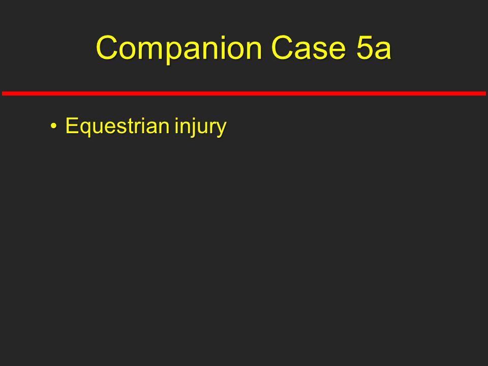 Equestrian injuryEquestrian injury Companion Case 5a