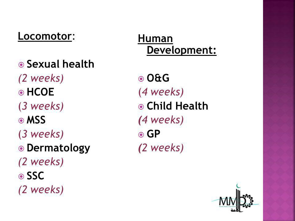 Locomotor: Sexual health (2 weeks) HCOE (3 weeks) MSS (3 weeks) Dermatology (2 weeks) SSC (2 weeks) Human Development: O&G (4 weeks) Child Health (4 weeks) GP (2 weeks)