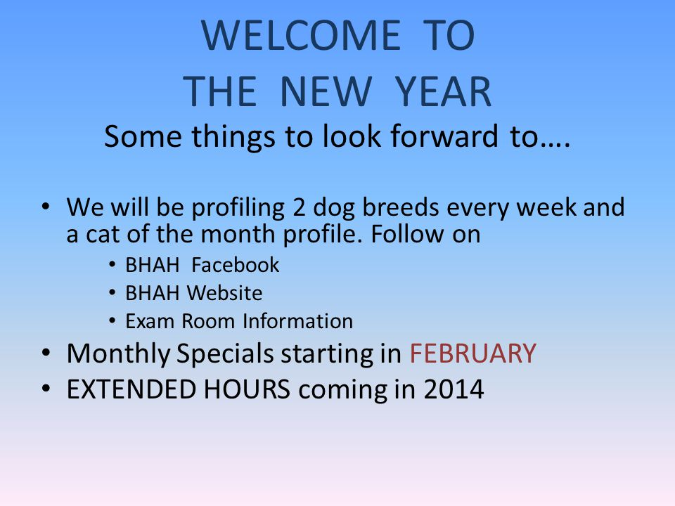 WELCOME TO THE NEW YEAR Some things to look forward to….