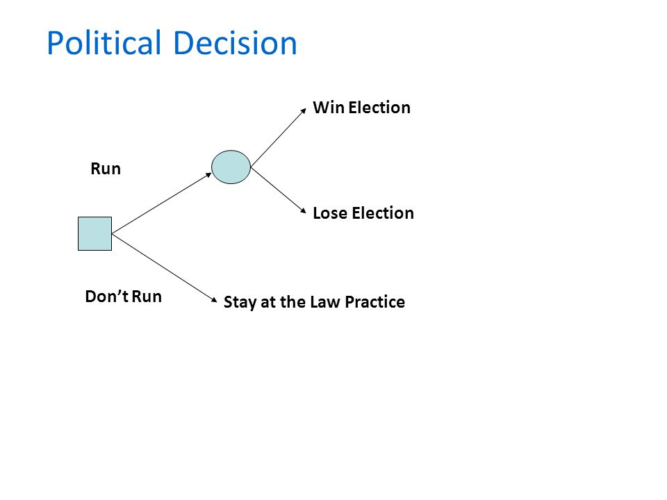 Political Decision Stay at the Law Practice Lose Election Win Election Run Dont Run