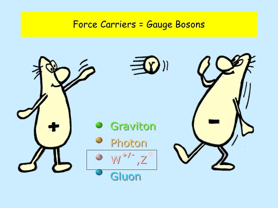 Graviton Photon W,Z Gluon Graviton Photon W,Z Gluon +/- 0 Force Carriers = Gauge Bosons