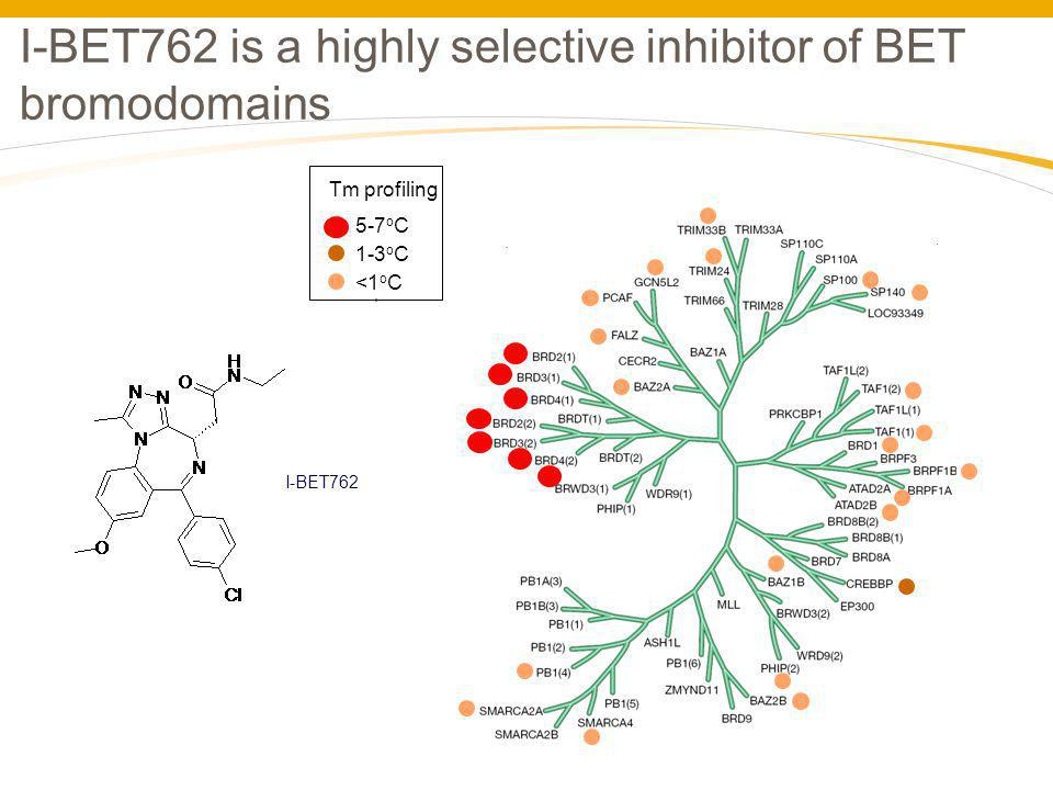 I-BET762 is a highly selective inhibitor of BET bromodomains Tm profiling 5-7 o C 1-3 o C <1 o C I-BET762