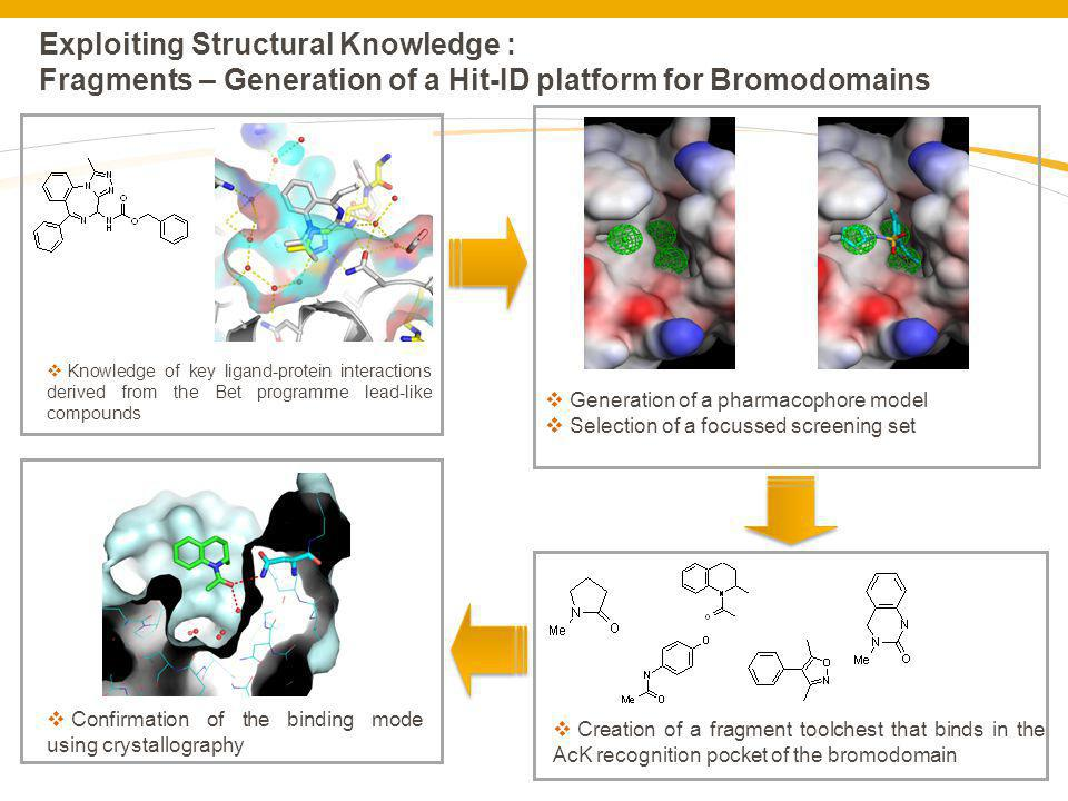 Exploiting Structural Knowledge : Fragments – Generation of a Hit-ID platform for Bromodomains Knowledge of key ligand-protein interactions derived fr