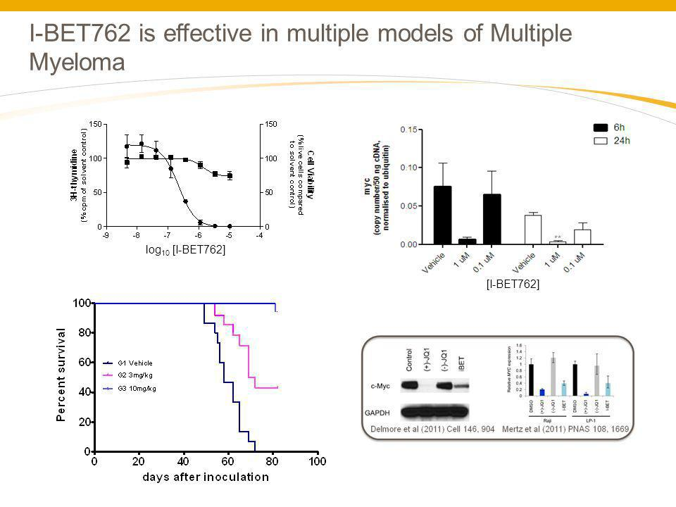 I-BET762 is effective in multiple models of Multiple Myeloma ** [I-BET762] log 10 [I-BET762]