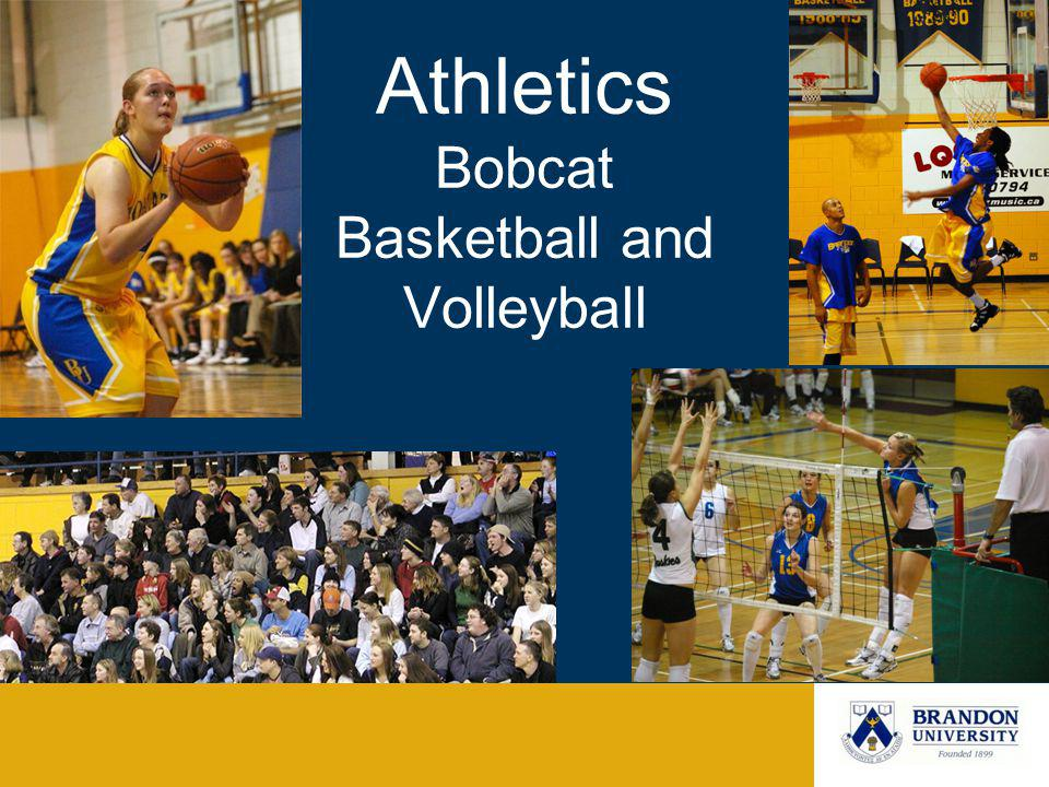 Athletics Bobcat Basketball and Volleyball