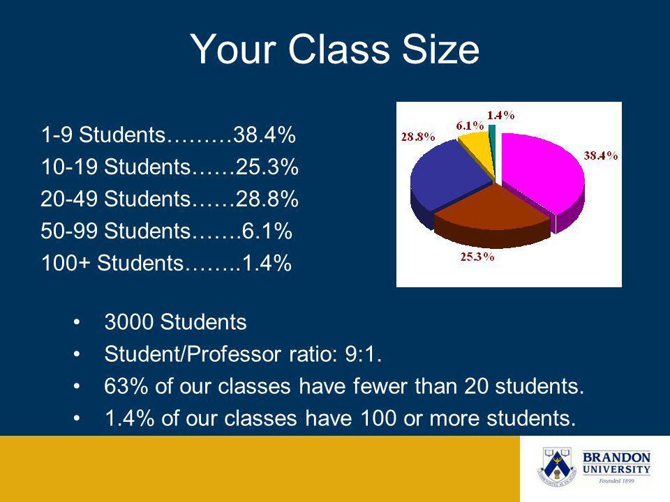 Your Class Size 1-9 Students………38.4% 10-19 Students……25.3% 20-49 Students……28.8% 50-99 Students…….6.1% 100+ Students……..1.4% 3000 Students Student/Professor ratio: 9:1.