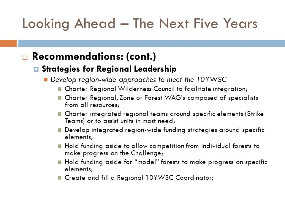 Looking Ahead – The Next Five Years Recommendations: (cont.) Strategies for Regional Leadership Develop region-wide approaches to meet the 10YWSC Char