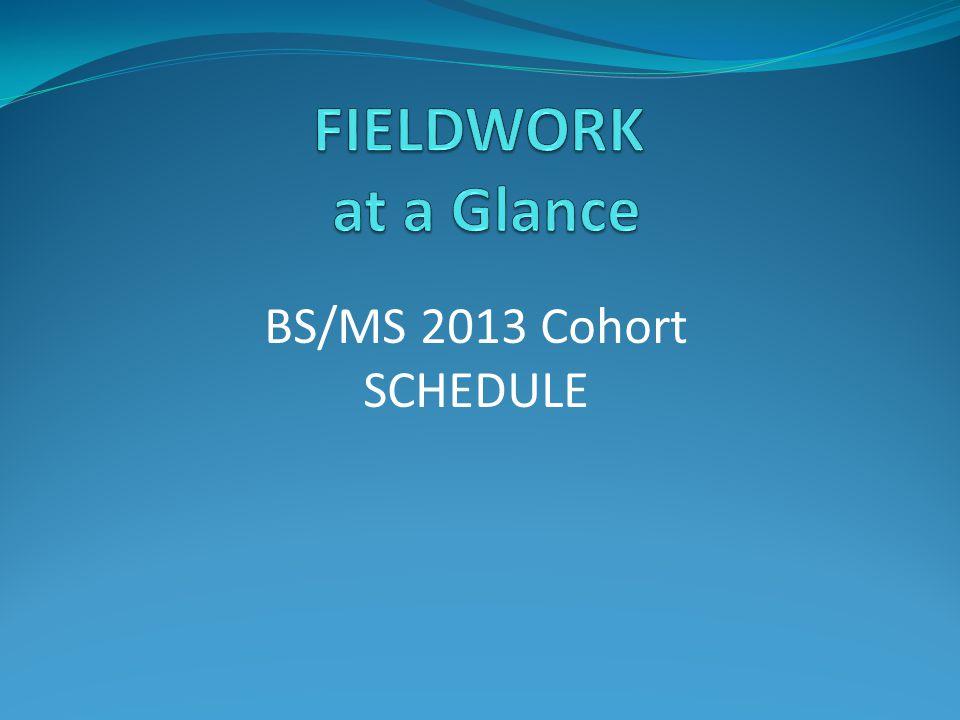 BS/MS 2013 Cohort SCHEDULE