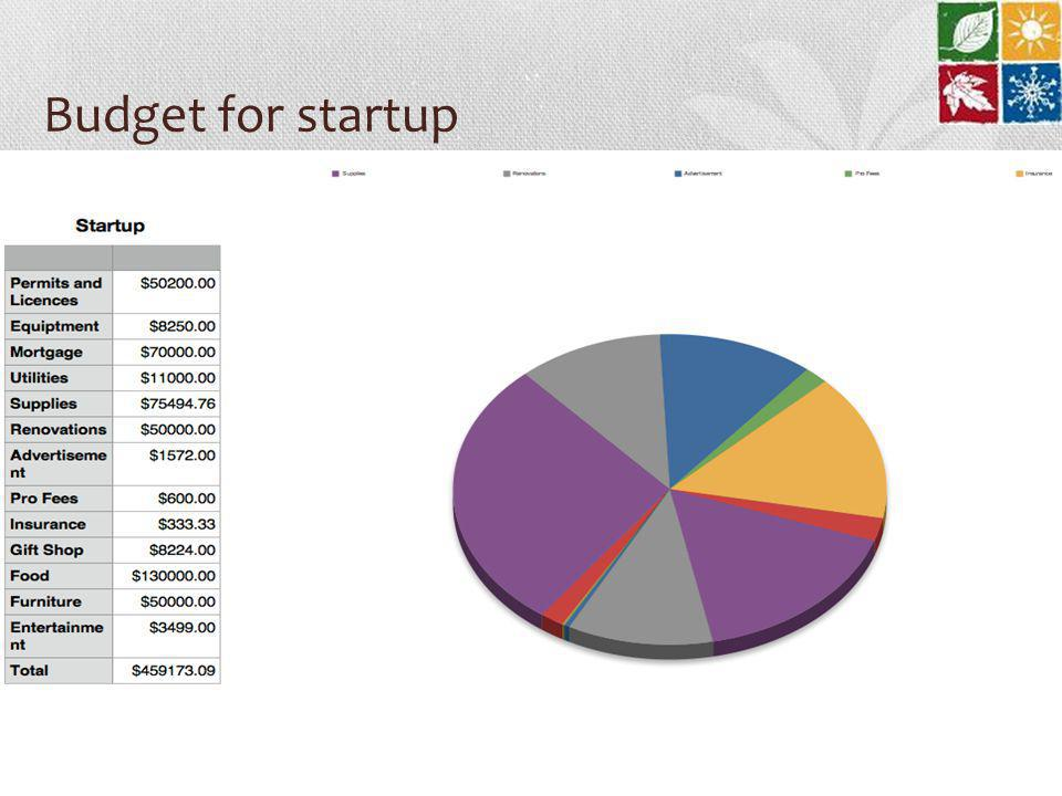 Budget for startup
