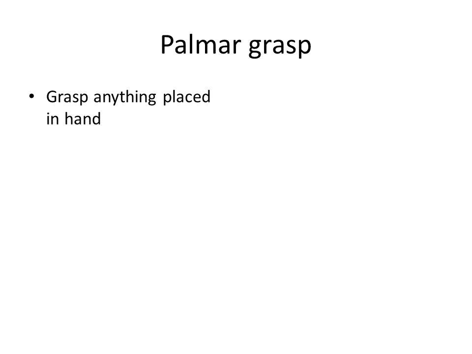 Palmar grasp Grasp anything placed in hand