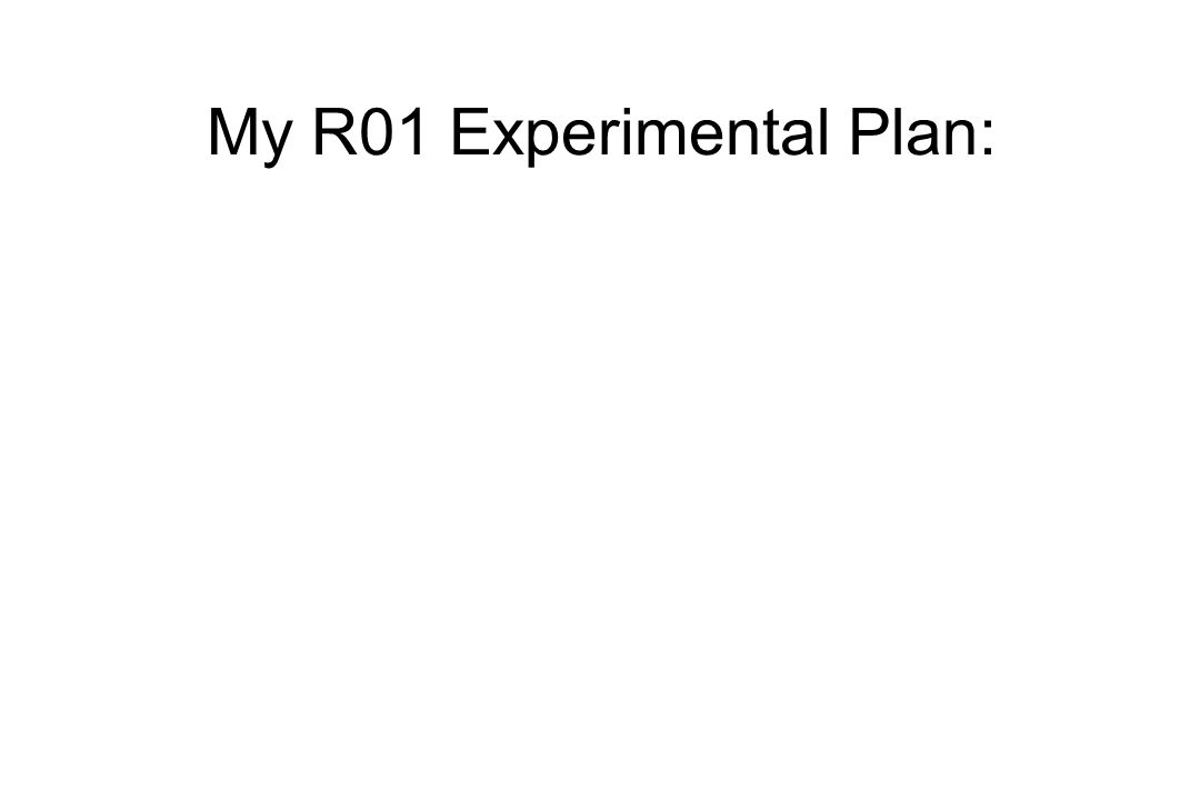 My R01 Experimental Plan: