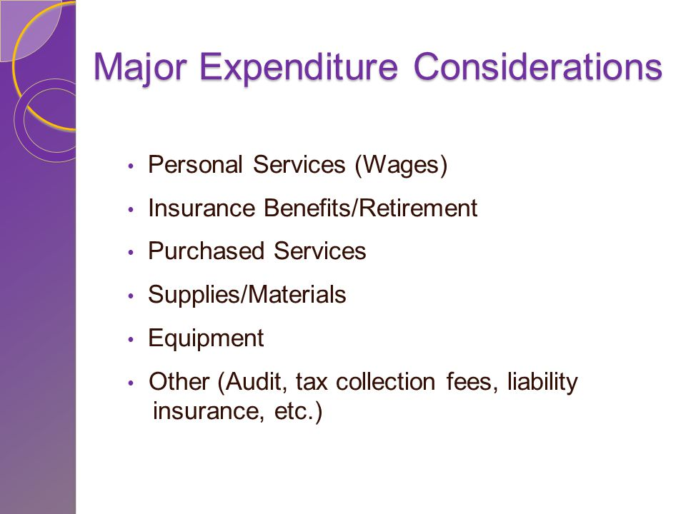 Major Expenditure Considerations Personal Services (Wages) Insurance Benefits/Retirement Purchased Services Supplies/Materials Equipment Other (Audit, tax collection fees, liability insurance, etc.)