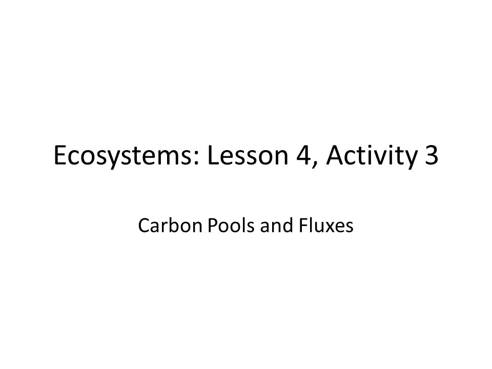 Ecosystems: Lesson 4, Activity 3 Carbon Pools and Fluxes