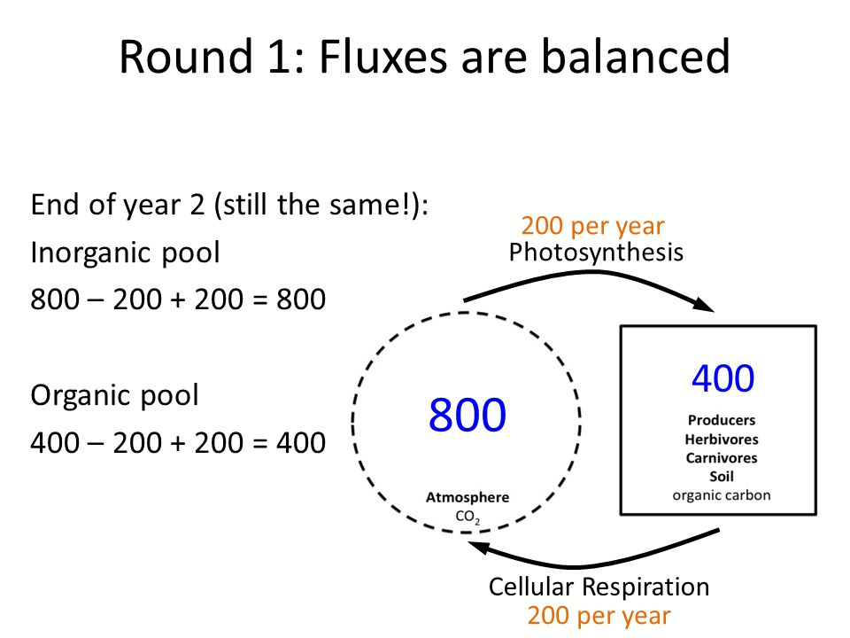 Round 1: Fluxes are balanced End of year 2 (still the same!): Inorganic pool 800 – 200 + 200 = 800 Organic pool 400 – 200 + 200 = 400 Photosynthesis Cellular Respiration 800 400 200 per year