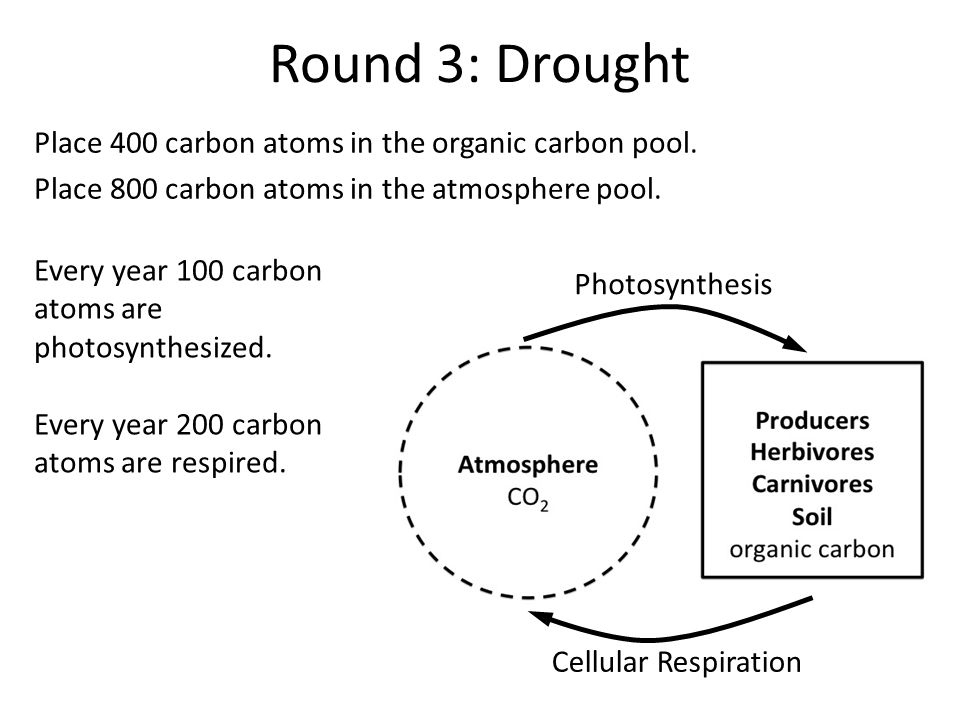 Round 3: Drought Place 400 carbon atoms in the organic carbon pool.