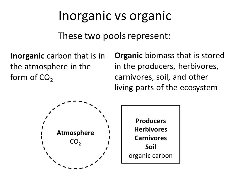 Inorganic vs organic Inorganic carbon that is in the atmosphere in the form of CO 2 Organic biomass that is stored in the producers, herbivores, carnivores, soil, and other living parts of the ecosystem These two pools represent: