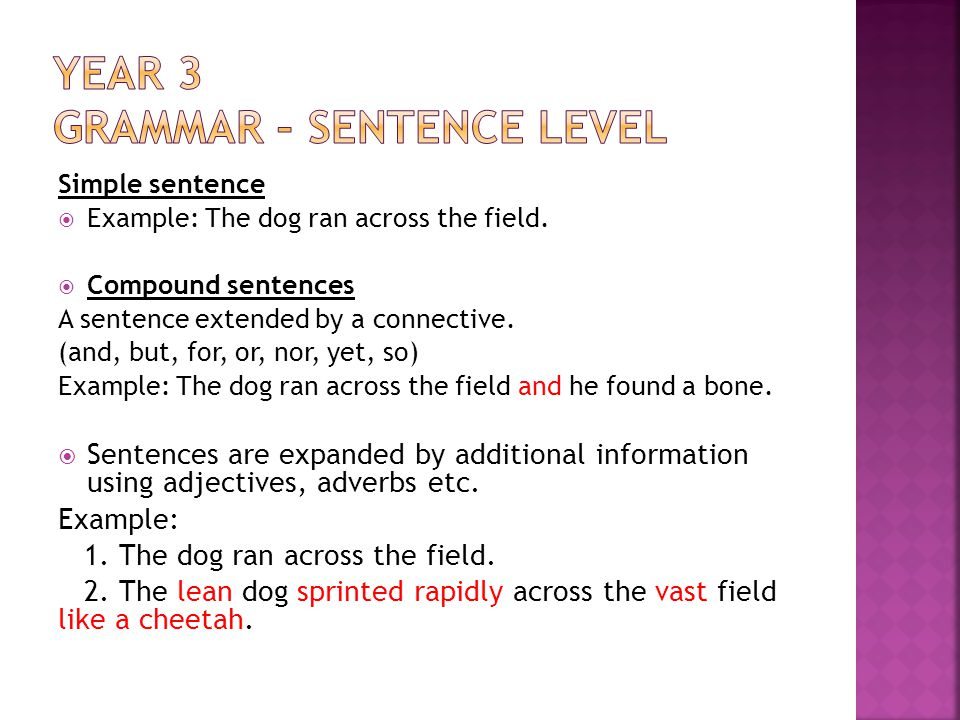 Simple sentence Example: The dog ran across the field.