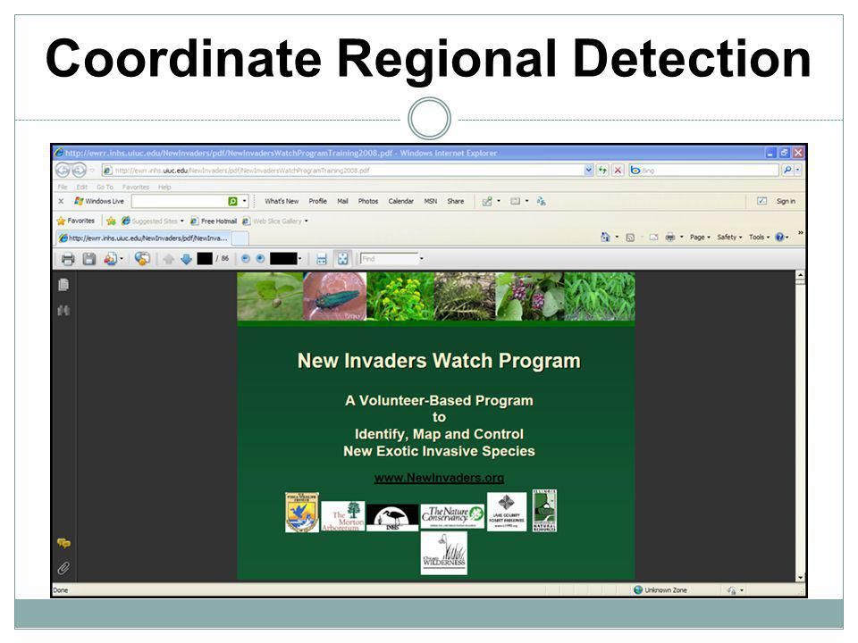 Coordinate Regional Detection