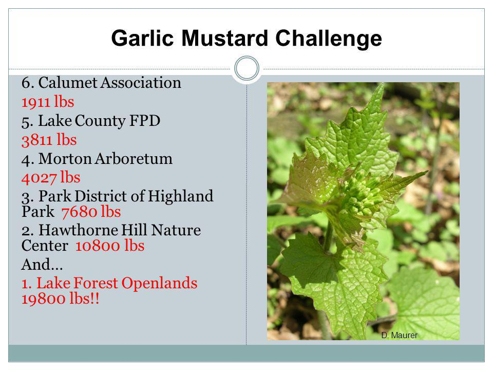 Garlic Mustard Challenge 6. Calumet Association 1911 lbs 5. Lake County FPD 3811 lbs 4. Morton Arboretum 4027 lbs 3. Park District of Highland Park 76