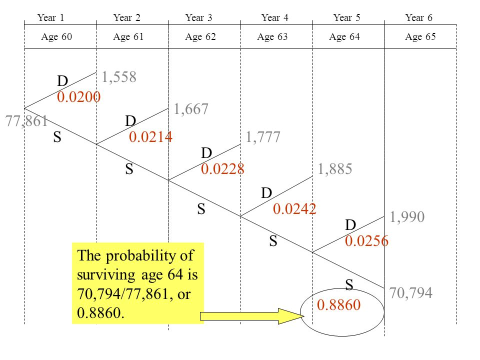 Year 1Year 2Year 3Year 4Year 5 Age 60Age 61Age 62Age 63Age 64 Year 6 Age 65 D D D D D S S S S S 77,861 1,558 1,667 1,777 1,885 1,990 70,794 The probab